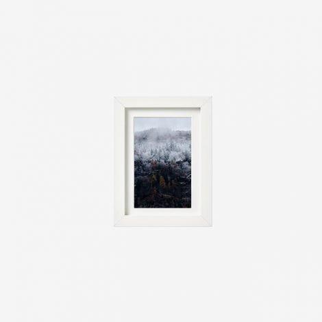 frame_10511415