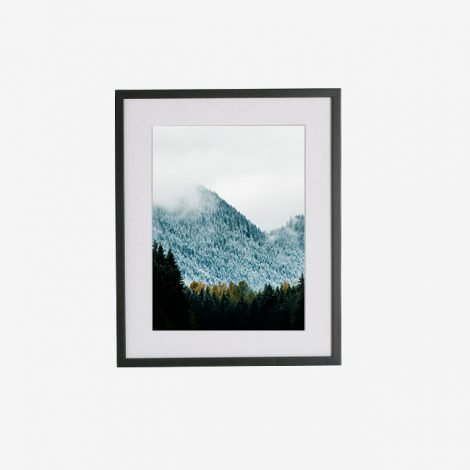 frame_10512455