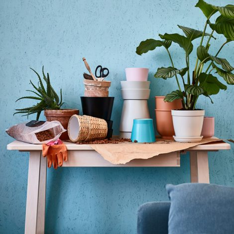 plant-pot-1523345