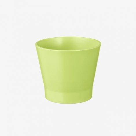 pot-1521347
