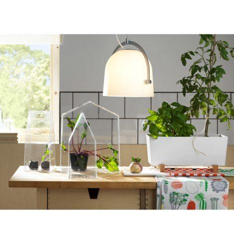 plant-pot-1511495-e