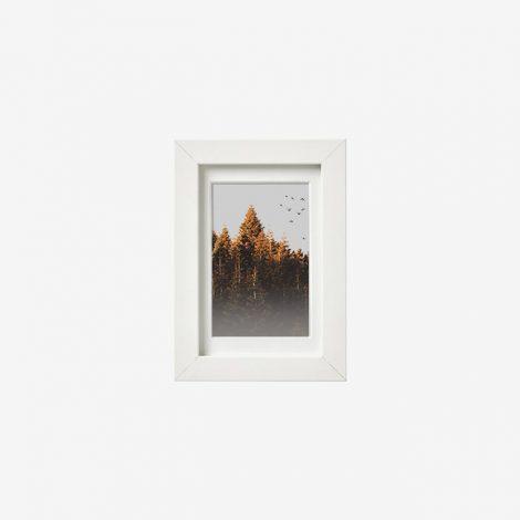 frame-1511411
