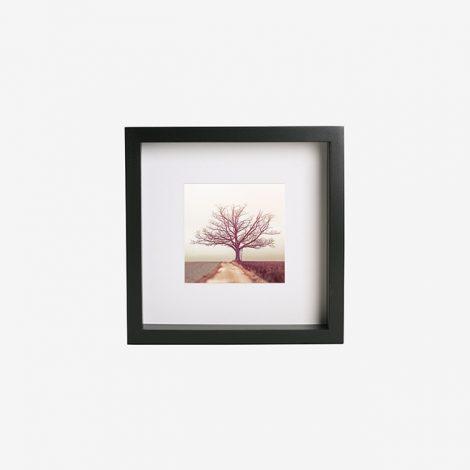 frame-1512402